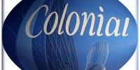 inmobiliaria colonial logo empresa la bolsa por antonomasia